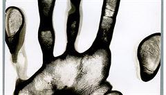 RECENZE: Výstava Absolute Beginners. Umění musí objevovat stále totéž