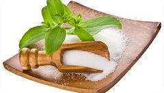 Zázračná bylinka nahradí cukr. Vypěstujte si doma stévii