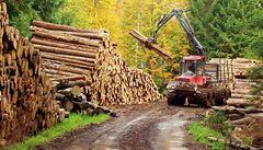 Státní firma žaluje stát. Lesy ČR mohou vymáhat ušlý zisk