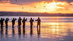 Třeboňští rybáři čekají na podzim výlov 2400 tun ryb, ceny drží na loňské úrovni