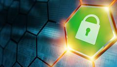 V příštím roce čekejme více kybernetických útoků hlavně na mobily a kryptoměny