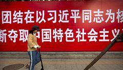 Pašeráci motýlů byli v Číně odsouzeni na pět až deset let vězení