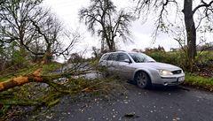 Spadlé stromy a silný vítr. V Ústeckém kraji zasahují hasiči na různých místech