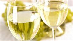 V soutěži speciálních vín v Lednici uspěla vína z Moravy i Kanady