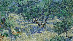 Americká restaurátorka našla na Van Goghově obraze lučního koníka