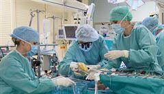 PETRÁČEK: Žít s jiným srdcem. Po půlstoletí se přelomová operace stala rutinou