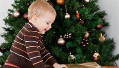 I otec má dostat právo strávit s dítětem Vánoce, upozornil soud
