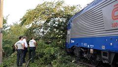 Důchodce 'terorista', který podle policie stojí za srážkami vlaků se stromy, je velkým příznivcem SPD