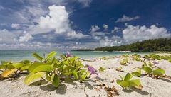 Mauricius: Dovolená v Indickém oceánu s kvalitními službami
