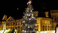 Ideálně smrk ztepilý vysoký 22 metrů. Praha stále hledá vánoční strom, lidé mohou posílat tipy