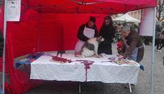 Hit letošních Vánoc? Štědrovečerní pes. Aktivisté se bouřili proti zabíjení kaprů