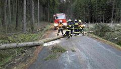 Vítr lámal stromy a poškozoval střechy, zranění nejsou. Hasiči evidují stovky výjezdů
