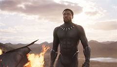 Komiksový útok na kasy. Black Panther je desátým nejvýdělečnějším filmem všech dob