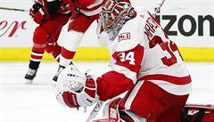 NHL: Mrázek přispěl 36 zákroky k výhře Detroitu nad Carolinou