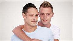 Homosexualita je zčásti dědičná, tvrdí vědci. V DNA našli pět podobností