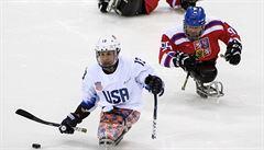Paralympijským hrám kralovali Američané, získali 13 zlatých. Druzí byli Rusové