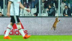 UEFA zatlačila na kluby. AS Řím obvinila ze zdržování, Besiktas hrozí trest kvůli kočce