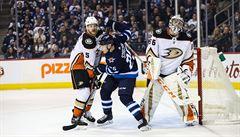 NHL: Pastrňák v NHL vítězným gólem dokonal obrat Bostonu v Dallasu