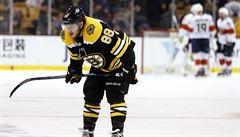 Skončila základní část NHL. Body Krejčího s Pastrňákem Bostonu nestačily