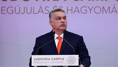 PETRÁČEK: Mladíci vs. mladíci. Ohrožuje Židy Orbán, či import vzorců chování?