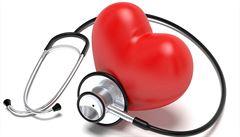 Brněnští vědci mají ocenění za software analyzující činnost srdce