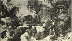 Pokusná zvířata v pravěku? Zdravotnictví našich předků bylo překvapivě vyspělé