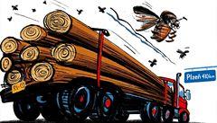 Vlaky a kamiony šíří kůrovce po celé zemi. Přeprava zasaženého dřeva ohrožuje české lesy