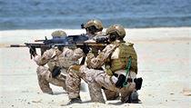 Speciální jednotky Navy SEALs.