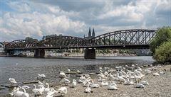 Prokleté pražské mosty. Za havarijní stav může nedostatečná údržba