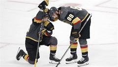 Dohrajme NHL za každou cenu, klidně na Antarktidě, vybízí vedení soutěže útočník Vegas