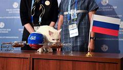 VIDEO: Vyhrají Rusové. Hluchý kocour Achilles předpovídá fotbalový šampionát