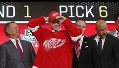 Draft NHL: Zadina jde jako šestý do Detroitu, Kaut míří do Colorada