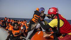 Česko prý slíbilo Merkelové dohodu o vracení migrantů. Úplný nesmysl, reaguje Babiš