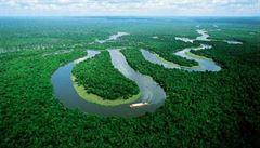 Dvěma pětinám amazonského pralesa hrozí, že se stanou savanou