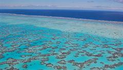 Velký bariérový útes ohrožují pesticidy