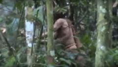 Záběry zachytily posledního člena amazonského indiánského kmene. Už 22 let přežívá v pralese sám
