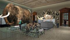Národní muzeum mění tvář. Nabídne 80 tisíc předmětů včetně legendárního plejtváka