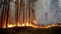 Duben je na požáry v přírodě extrémní, tvrdí hasiči. Před suchem varují i meteorologové
