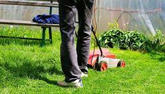Ve vedru je vhodné zalévat ráno či večer a nesekat trávníky