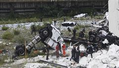 Zraněný český řidič kamionu byl propuštěn z nemocnice v Janově