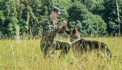 Je to mazel, říká četařka o psím veteránovi, kterému zachránili život američtí lékaři