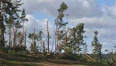 Česko se potýká si silným větrem, může dosahovat síly orkánu. Tisíce domácností zůstaly bez elektřiny