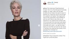 Gillian Andersonová alias agentka Scullyová vytvořila svou první módní kolekci