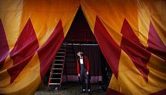 Cirkusy nesouhlasí s limitem 100 diváků na představení, navrhují vlastní řešení