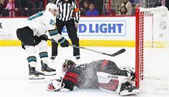 Mrázka v NHL překonal Hertl, ale český gólman vychytal Carolině výhru