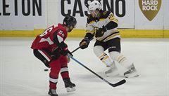 Pastrňák podruhé v sezoně zaznamenal proti Ottawě čtyři body, Krejčí přidal gól a nahrávku