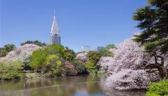 Hlídač připravil tokijskou zahradu o miliony. Bál se cizinců a tak nevybíral vstupné