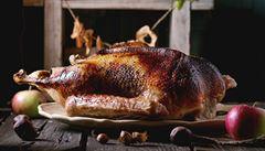 Husí hostina. Jak se se sváteční pečínkou vypořádávají šéfkuchaři? A která část husy je nejoblíbenější?