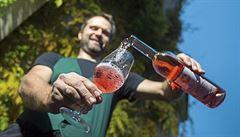 Likérky chtějí rovnou daň pro víno, pivo i tvrdý alkohol. Nepředstavitelné, oponují vinaři