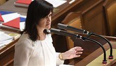 Maxová by měla v europarlamentu zastupovat ČSSD. Politička patřila k zakládajícím členům ANO